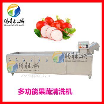气泡清洗机 红枣清洗机 蔬菜瓜果清洗机 自动红枣加工设备