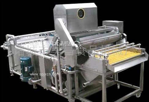 供应大枣专用清洗机 产品图片