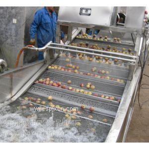 蔬菜清洗設備 葉類菜清洗機設備