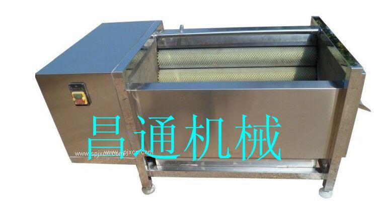 莲藕清洗机 中药材毛辊清洗机