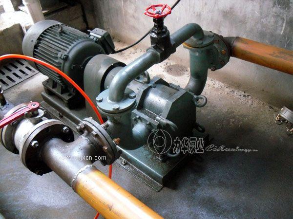 防爆油泵  汽油泵 柴油泵-力華輕質油專用泵