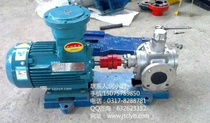 YCB3.3-0.6不锈钢圆弧齿轮泵