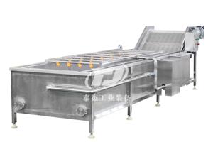 江西厂家直销泰杰TJ-6000根茎类蔬菜水果葡萄清洗机高压气泡清洗机