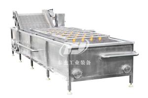 湖南厂家直销泰杰TJ-6000油菜气泡清洗机蔬菜气泡清洗机