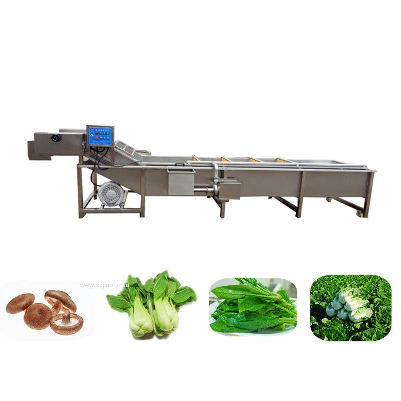 蔬菜专用清洗机