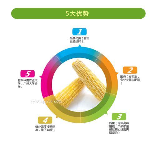 玉米专用清洗机多少钱一台